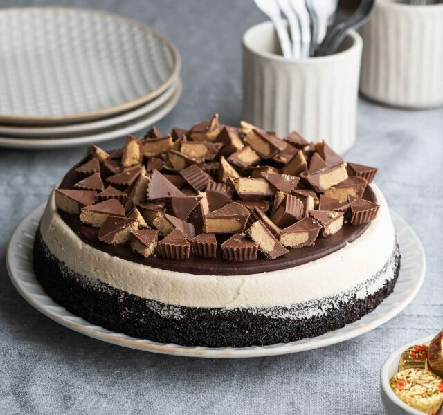 One-Layered-Reese's-Cake