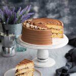 Nutella-Cake-2